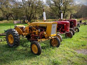 Early Morning Farm CSA