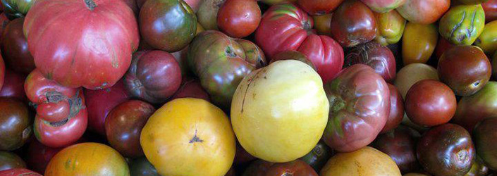 Heirloom Tomatoes by Early Morning Farm CSA