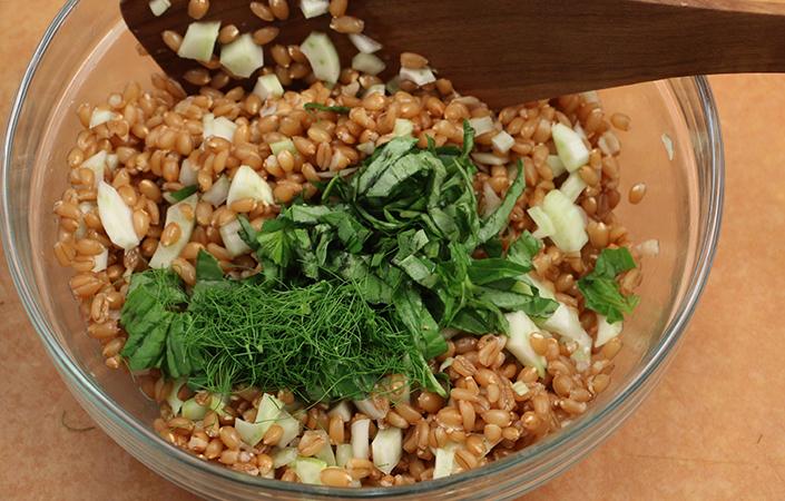 Fennel Farro Salad by Early Morning Farm CSA