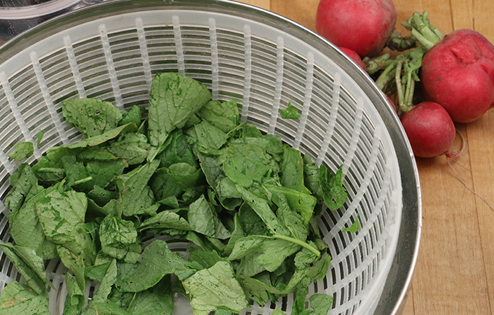 Radish Salad by Early Morning Farm CSA