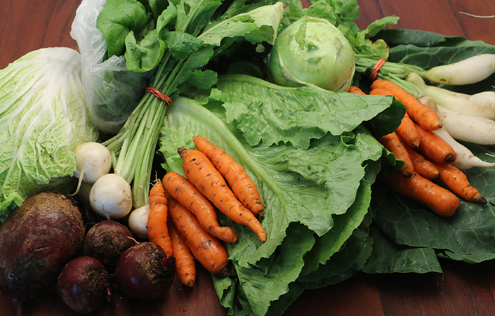 Premium CSA Share Week 2 Meal Plan by Early Morning Farm