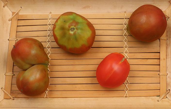 Heirloom Tomato Crisp