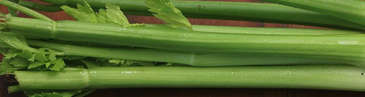 Celery by Early Morning Farm CSA