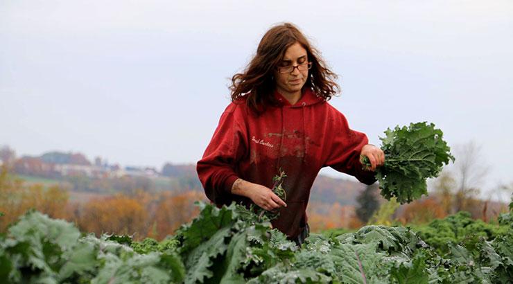 Sarah-Kale-10-17-14