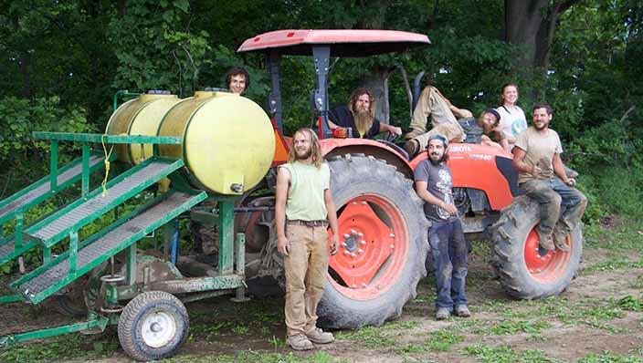 kale crew