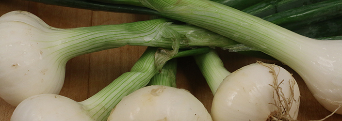 spring onions 2