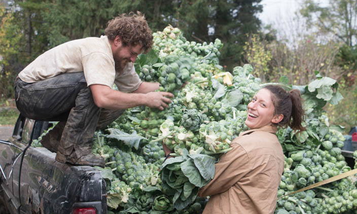 Why Fall is the Best Time to Join a CSA!