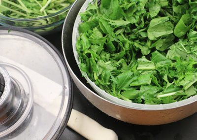 Product Review – The Best Salad Spinner