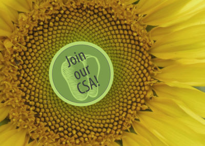 Celebrate Earth Day & Save!