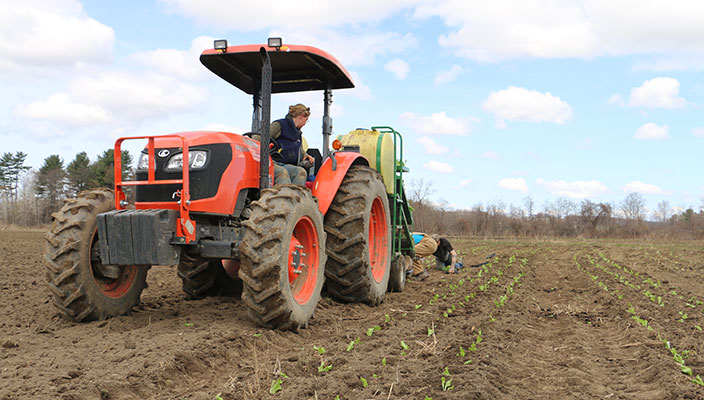 Planting in the Fields for our CSA