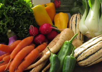 The Paleo Diet and Our CSA